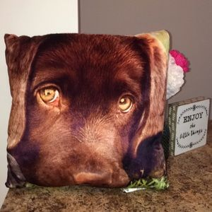 Other - Lab pillow